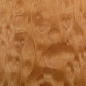 Quilted Pacific Big-Leaf Maple swatch