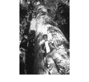 A young boy stands in front of one of the large trees in the Inimim Forest