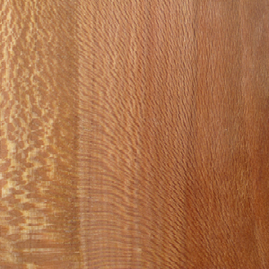Sycamore Wood swatch