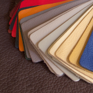 Bison Leather Swatches