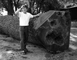 Robert Erickson displays a native California after removal from a client's yard